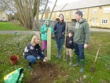 Planting an apple tree at Swinford Green
